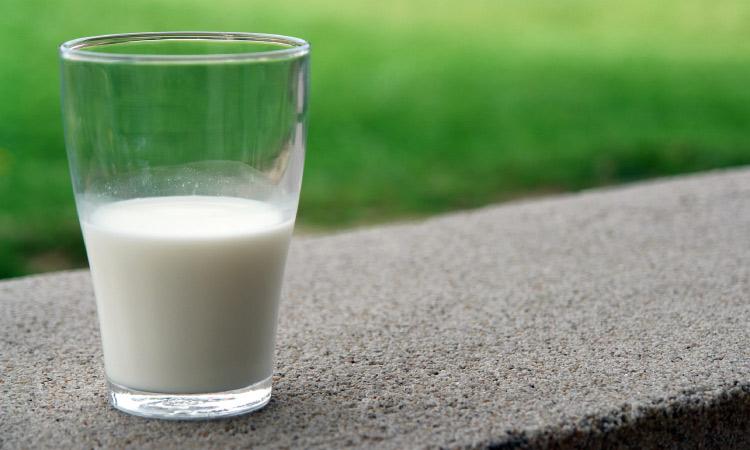 Closeup of a glass half-full of white cow's milk sitting on a curb by green grass to hold a knocked-out tooth