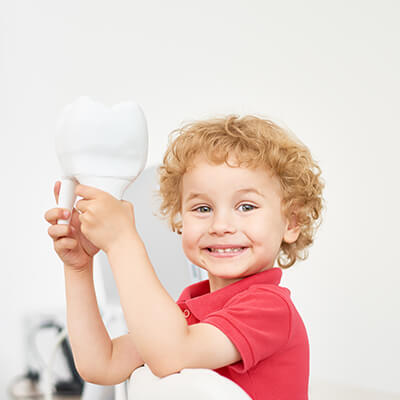 Young child holding up a model of a tooth