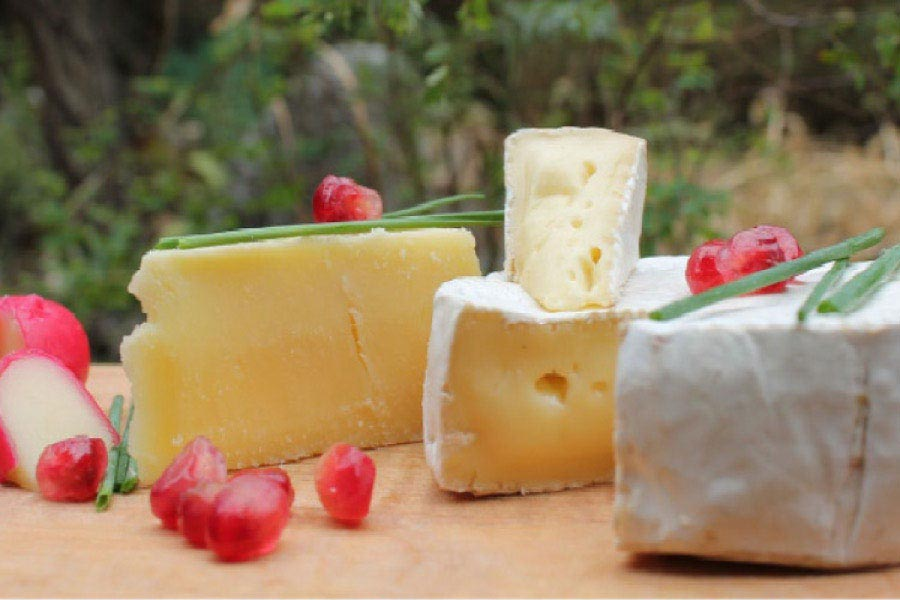 cheese blocks and fruit good for teeth